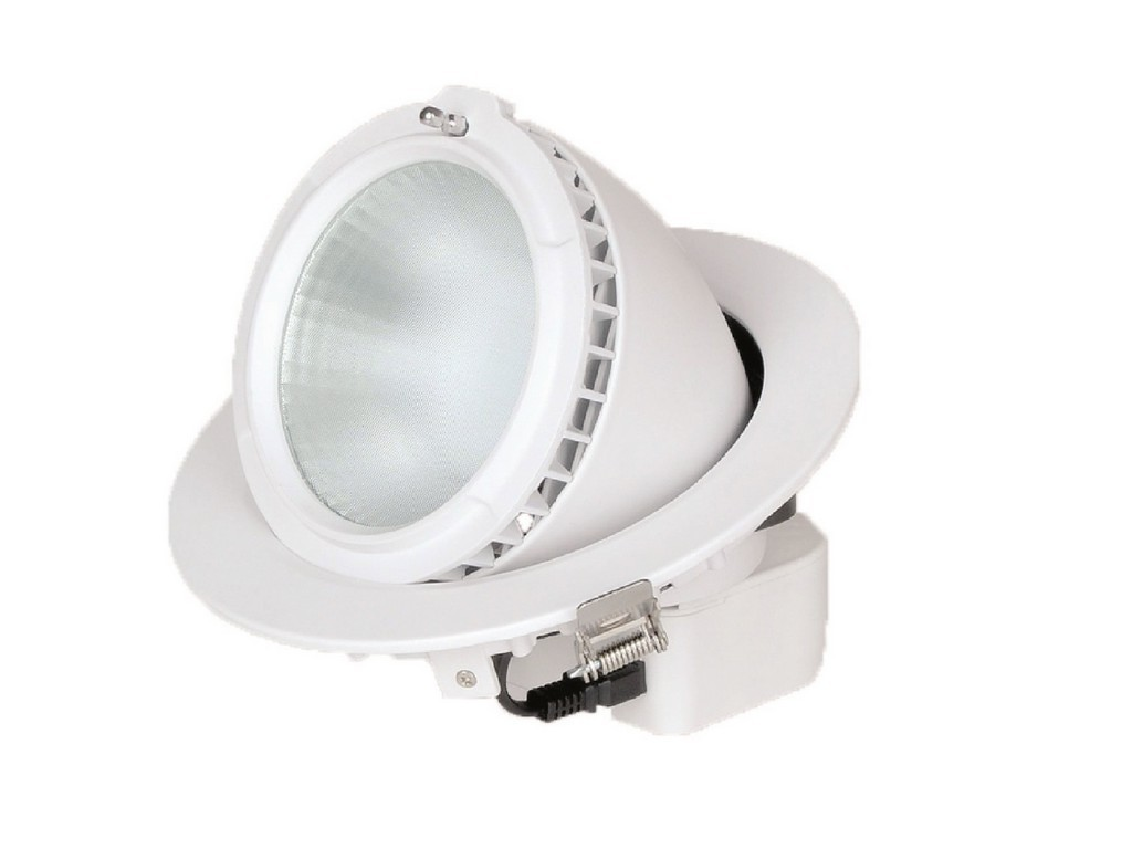 DOWNLIGHT LED EMPOTRABLE PROFESIONAL ORIENTABLE PF>0,9 CORTE 185MM 28W 5000K 60º 230V